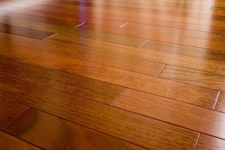 6 Criteria for Pet-Friendly Wood Flooring
