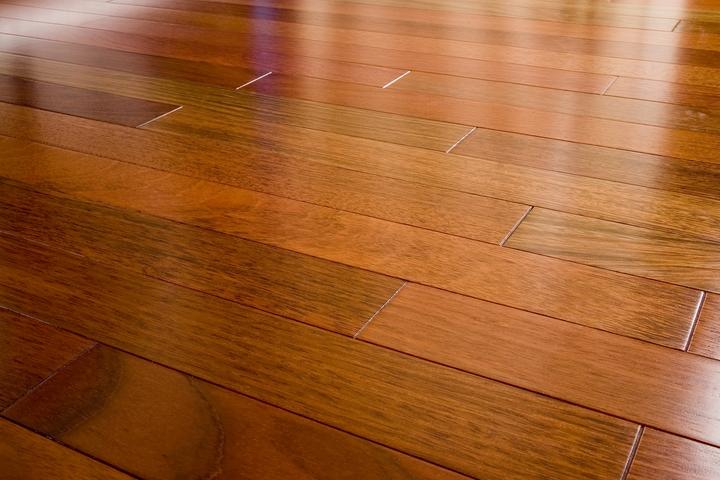 6 Criteria for Pet-Friendly Wood Flooring